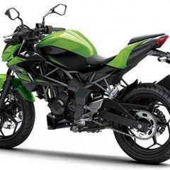 Shishir Sinha Joins India Kawasaki Motors