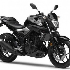 Yamaha MT-03 photos revealed