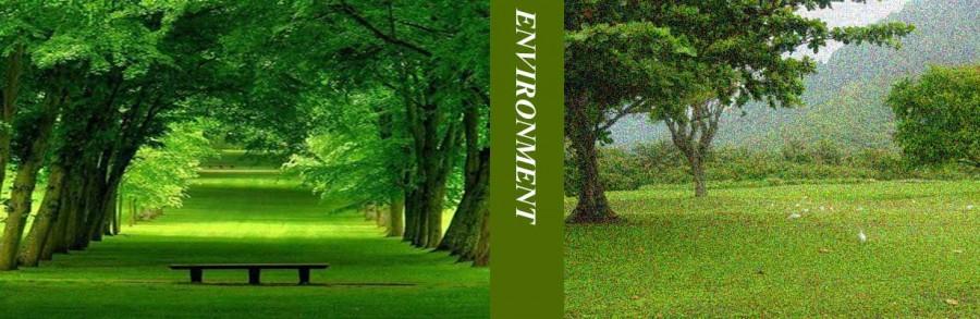 SIAM Environment