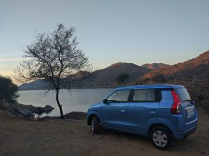 2019 Maruti Wagon R with Tree Landscape Photo